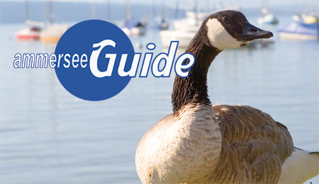 Ammersee Guide